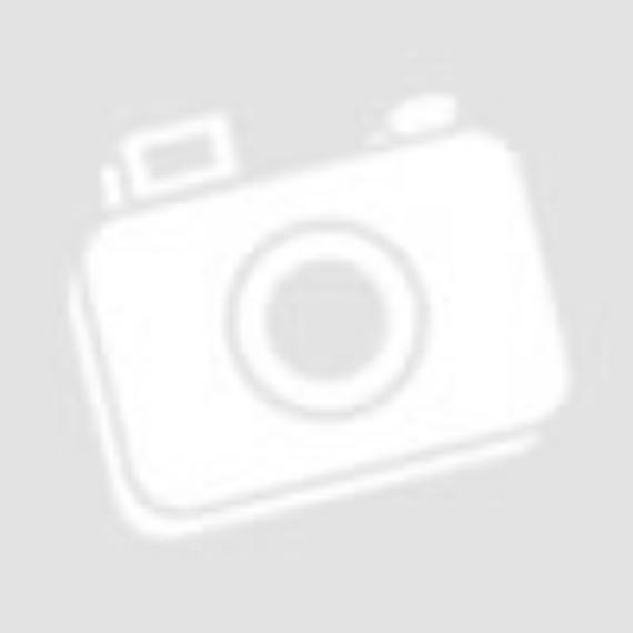 Mozsonyi Patika - ALCORYTTHM 100ML 100ML
